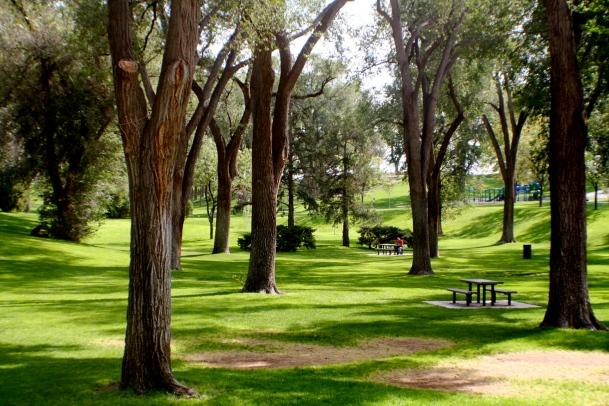 Albuquerque_Roosevelt_Park