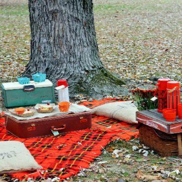54eb758b8ea38_-_fall_picnic_120413_lgn-4zgy9e